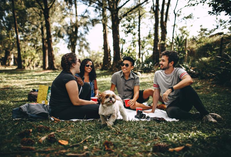 friends having picnic with dog