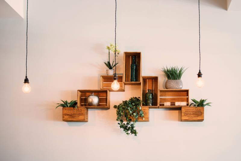 box shelves on wall with plants